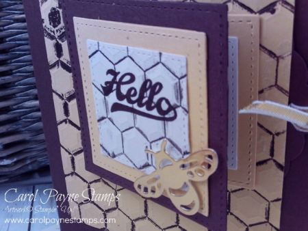 Stampin_up_hexagon_dragonfly_dreams_carolpaynestamps2