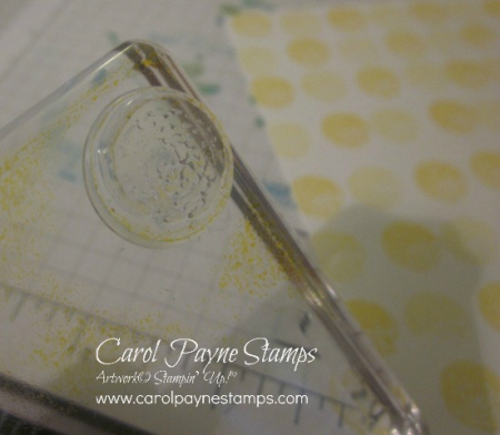 Stampin_up_daisy_delight_background_carolpaynestamps2
