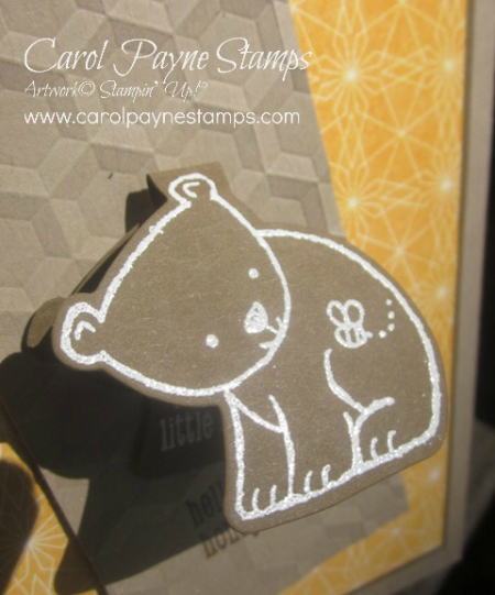 Stampin_up_a_little_wild_carolpaynestamps9
