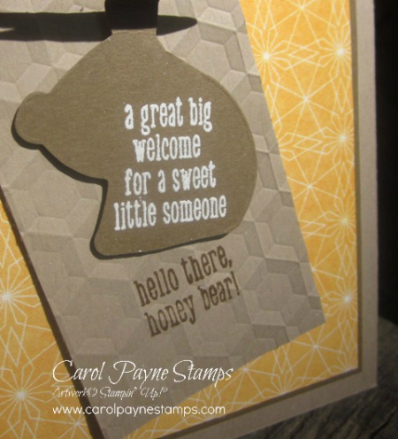 Stampin_up_a_little_wild_carolpaynestamps11