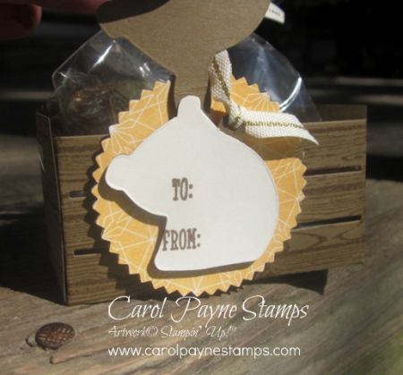 Stampin_up_a_little_wild_carolpaynestamps15