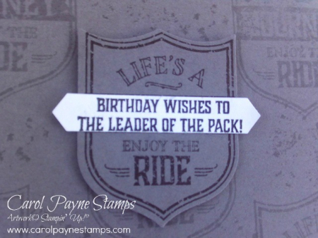 Stampin_up_one_wild_ride_carolpaynestamps8