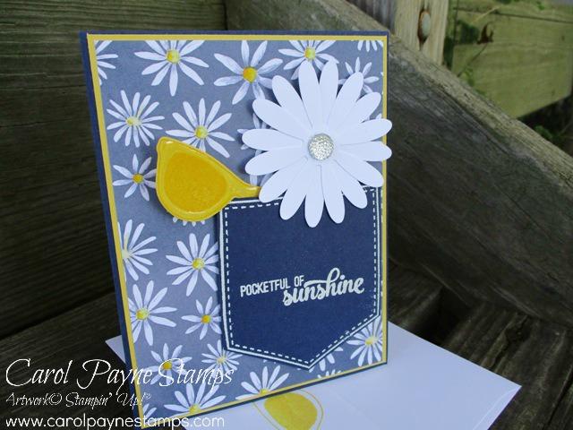 Stampingroxmyfuzzybluesox stampin up pocketful of daisies stampinuppocketfulofsunshinecarolpaynestamps1 m4hsunfo