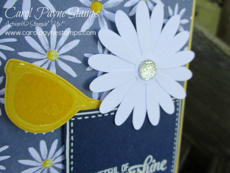 Stampin_up_pocketful_of_sunshine_carolpaynestamps2