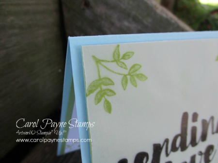 Stampin_up_lots_of_love_carolpaynestamps3