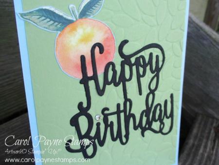 Stampin_up_happy_birthday_carolpaynestamps2