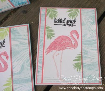 Stampin_up_fabulous_flamingo_carolpaynestamps3