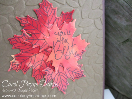 Stampin_up_colorful_seasons_label_me_pretty_carolpaynestamps3