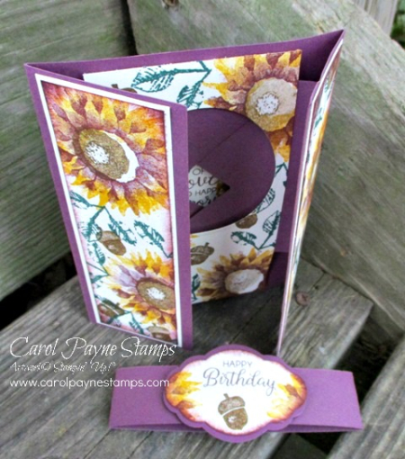 Stampin_up_painted_harvest_shutter_carolpaynestamps3