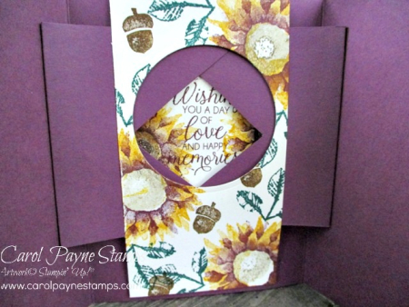 Stampin_up_painted_harvest_shutter_carolpaynestamps4