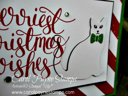 Stampin_up_watercolor_christmas_carolpaynestamps3