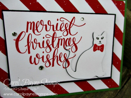Stampin_up_watercolor_christmas_carolpaynestamps8