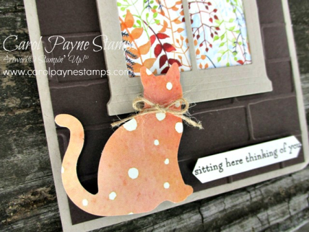 Stampin_up_sitting_here_carolpaynestamps7