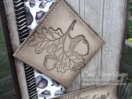 Stampin_up_count_my_blessings_carolpaynestamps2