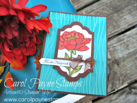 Stampin_up_youve_got_this_carolpaynestamps2