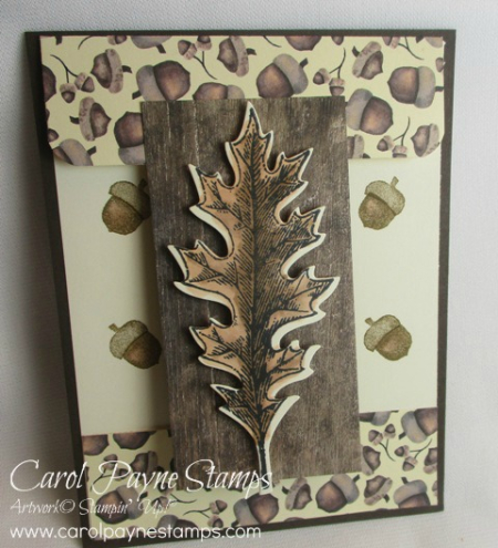 Stampin_up_vintage_leaves_carolpaynestamps3