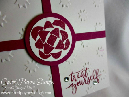 Stampin_up_picture_perfect_birthday_carolpaynestamps7