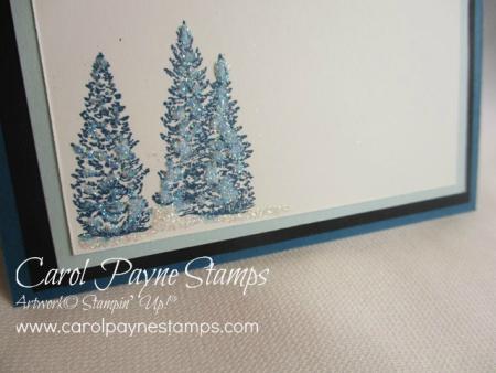 Stampin_up_nature_sings_carolpaynestamps5
