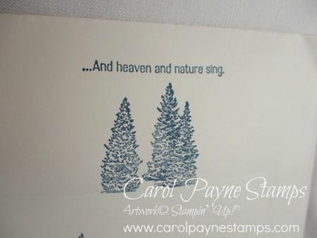 Stampin_up_nature_sings_carolpaynestamsps6