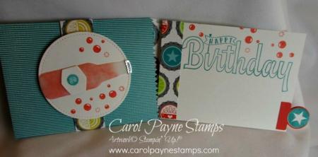 Stampin_up_bubble_&_fizz_carolpaynestamps8