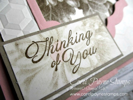 Stampin_up_heartfelt_blooms_carolpaynestamps3