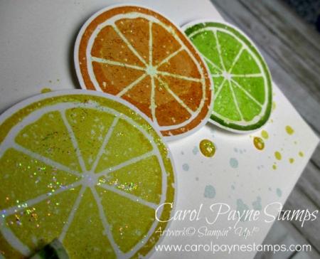 Stampin_up_lemon_zest_carolpaynestamps7