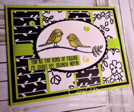Stampin_up_bird_banter_carolpaynestamps5
