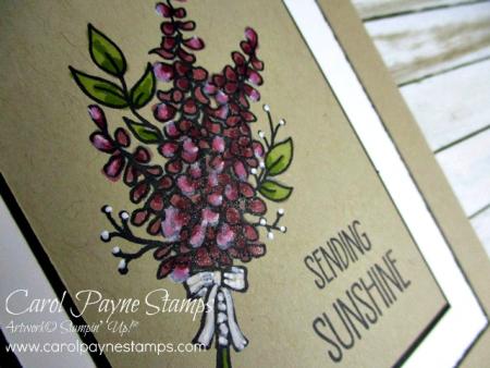 Stampin_up_lots_of_lavender_carolpaynestamps2