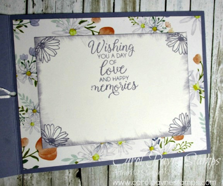 Stampin_up_daisy_delight_carolpaynestamps4