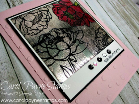 Stampin_up_you've_got_this_carolpaynestamps2