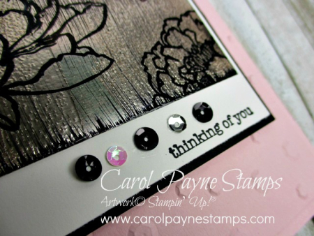 Stampin_up_you've_got_this_carolpaynestamps4