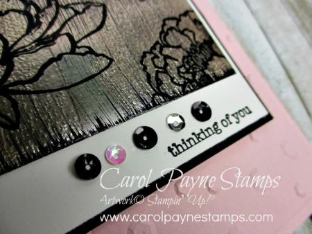 Stampin_up_you've_got_this_carolpaynestamps4