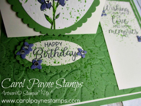 Stampin_up_touches_of_texture_carolpaynestamps3