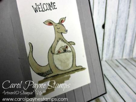 Stampin_up_barn_door_animal_outing_carolpaynestamps4