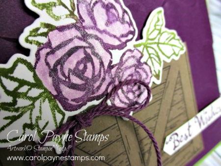 Stampin_up_barn_door_petal_palette_carolpaynestamps2
