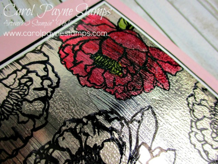 Stampin_up_you've_got_this_carolpaynestamps3