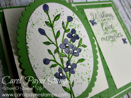 Stampin_up_touches_of_texture_carolpaynestamps2