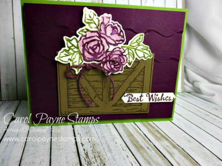 Stampin_up_barn_door_petal_palette_carolpaynestamps1
