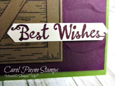 Stampin_up_barn_door_petal_palette_carolpaynestamps3