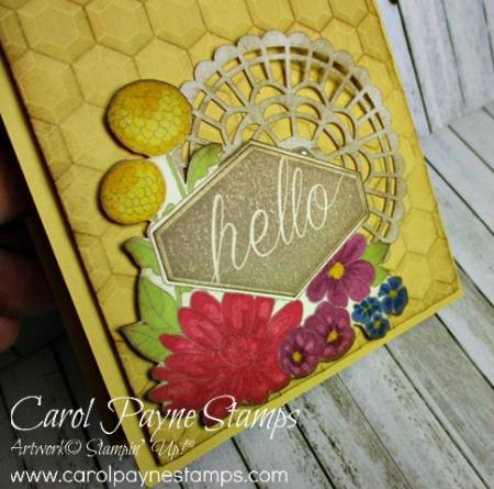 Stampin_up_accented_blooms_hexagons_carolpaynestamps2