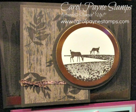 Stampin_up_seize_the_day_carolpaynestamps2