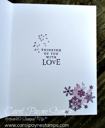 Stampin_up_beautiful_blizzard_carolpaynestamps7