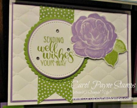 Stampin_up_healing_hugs_carolpaynestamps7