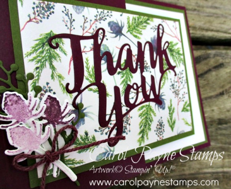 Stampin_up_frosted_floral_carolpaynestamps4