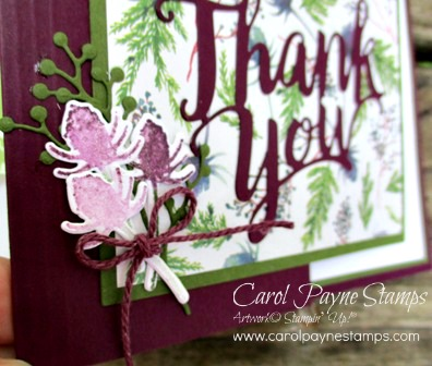 Stampin_up_frosted_floral_carolpaynestamps3