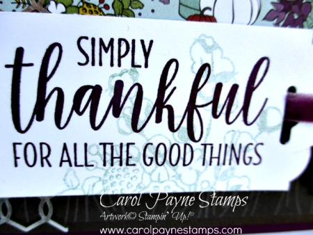 Stampin_up_country_home_carolpaynestamps3
