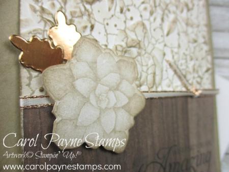 Stampin_up_painted_seasons_carolpaynestamps3