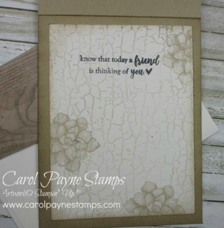 Stampin_up_painted_seasons_carolpaynestamps6
