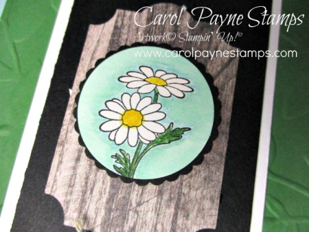 Stampin_up_in_every_season_carolpaynestamps2