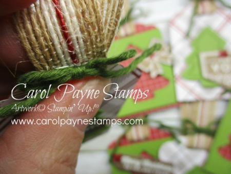 Stampin_up_tags_&_tidings_carolpaynestamps4